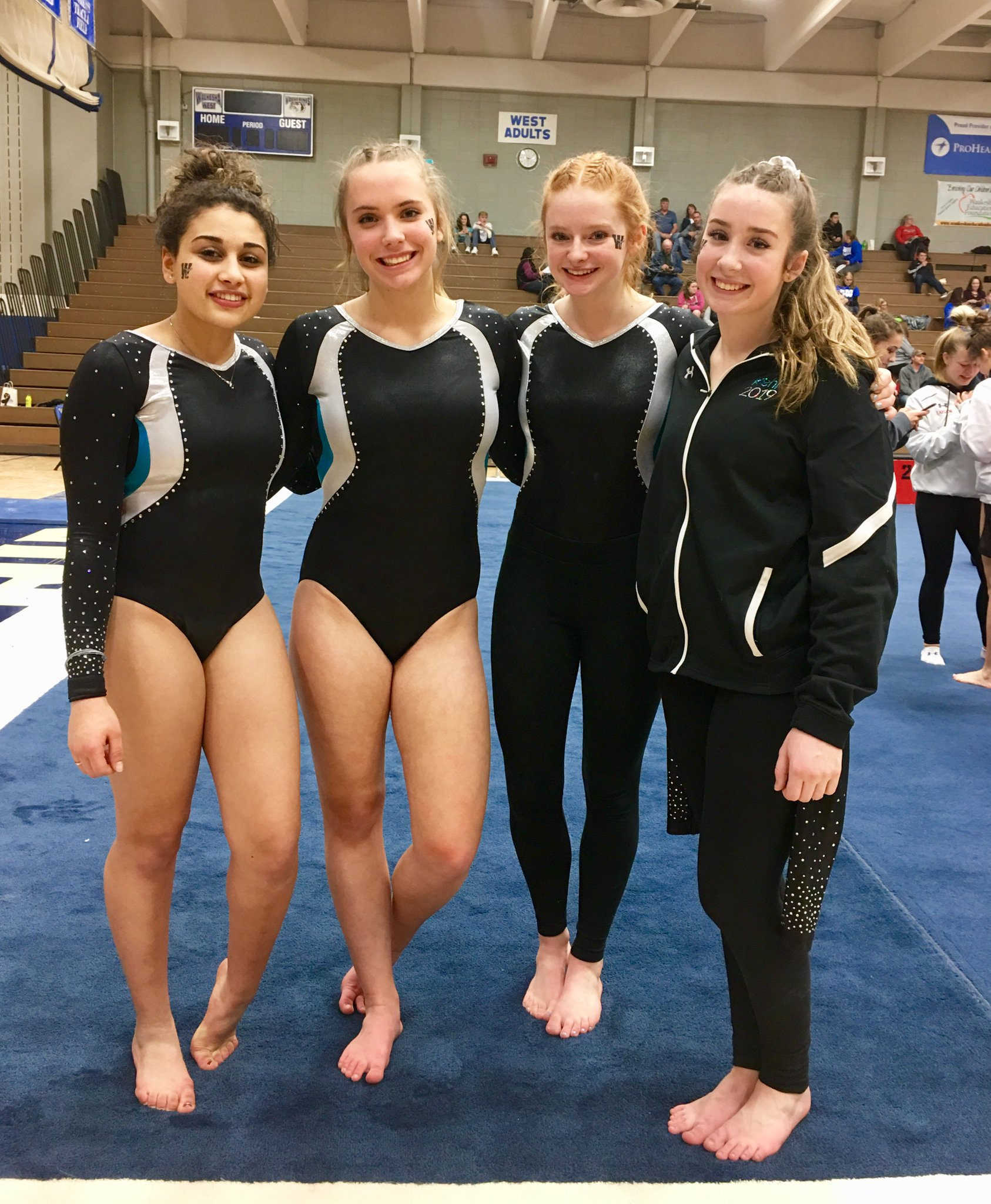 South Gymnasts